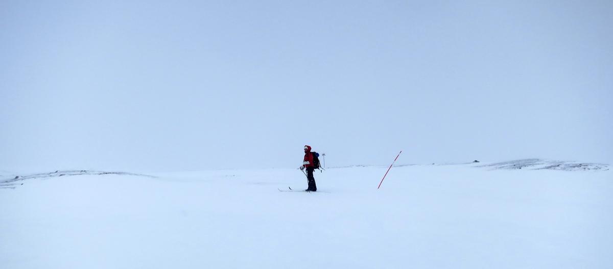 Annika i snöstorm