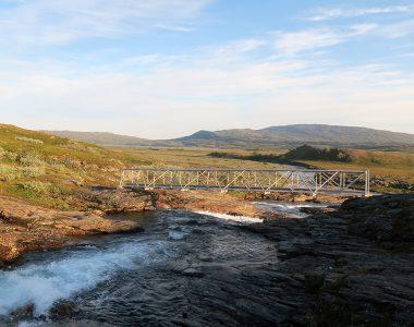 Sommarbron